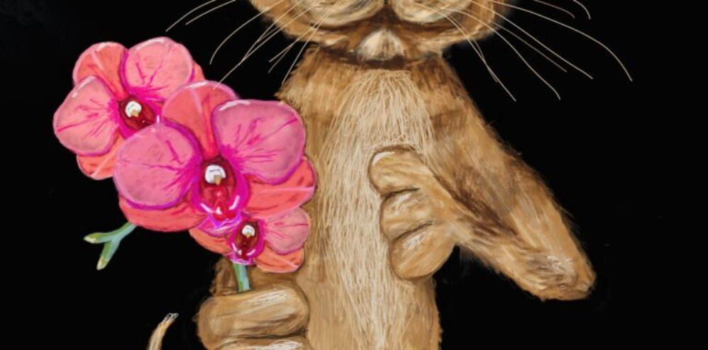 Orchid Cat