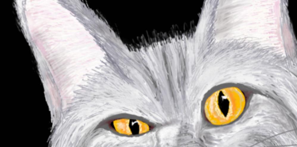 Eh_Cat96